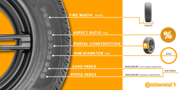 Tire Anatomy
